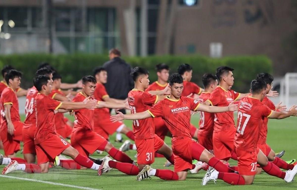 Việt Nam và UAE nhất trí mở rộng quan hệ hợp tác, phát triển bóng đá Ảnh 1
