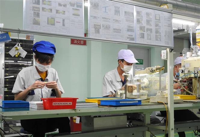 Phương án xét nghiệm COVID-19 cho người lao động tại cơ sở sản xuất Ảnh 1