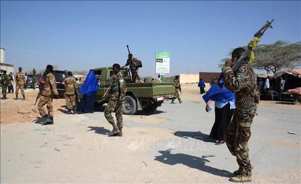 Quân đội Quốc gia Somalia tiêu diệt 19 phần tử al-Shabab Ảnh 1