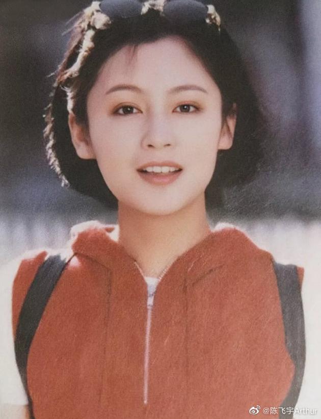 Nhan sắc tuổi 52 của 'Nữ diễn viên xinh đẹp nhất Trung Quốc' Ảnh 6