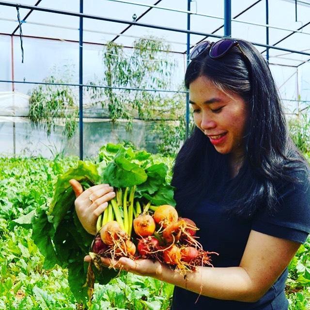 Nữ CEO thành công từ việc phát triển chuỗi giá trị du lịch nông nghiệp Ảnh 2