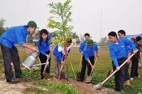Hà Nội: Đẩy mạnh phong trào Tết trồng cây, bảo vệ, phát triển rừng