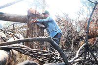 Khánh Sơn: Nỗ lực giữ rừng Ko Róa