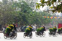 Lễ hội hoa quốc tế năm 2023 sẽ diễn ra tại Quảng Bình