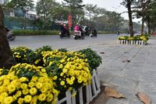 'Con đường hoa' chào mừng Đại hội Đảng của cán bộ, nhân dân phường Quan Hoa