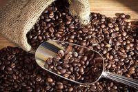 Thị trường cà phê tiếp tục đi xuống