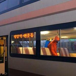 WHO: Triều Tiên vẫn 'miễn nhiễm' với COVID-19