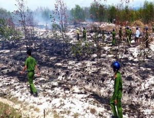 Nguyên nhân cháy gần 11ha rừng ở Quảng Trị
