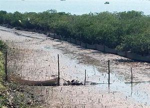 Quảng Ninh: Tìm thấy thi thể nạn nhân mất tích trên sông Ka Long
