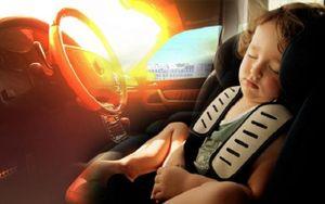 Điều gì xảy ra với cơ thể con người khi bị bỏ lại trong xe hơi thời gian dài?