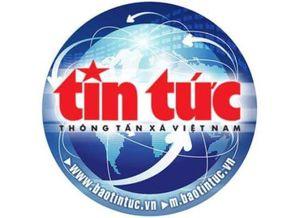 Việt Nam đứng thứ 4 thế giới tại Olympic Tin học quốc tế 2019
