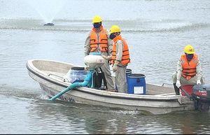 Việc so sánh, đánh kết quả xử lý nước ao hồ phải chờ kết quả