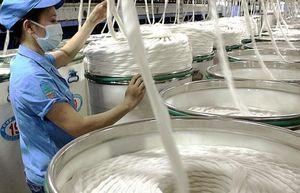 Giá sợi xuất khẩu đang chịu nhiều bất lợi