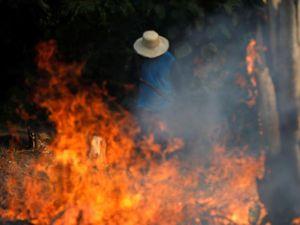 Rừng Amazon bốc cháy và 8,2 tỷ USD đang bị thiêu rụi