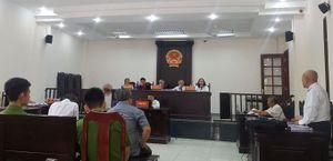 Nhiều khuất tất trong vụ án 'lừa đảo chiếm đoạt tài sản' xảy ra tại Công ty Sài Gòn Cây Cảnh?