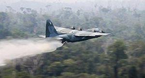 Brazil điều máy bay giội nước dập cháy rừng Amazon