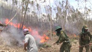Huy động hơn 500 người chữa cháy rừng ở Phú Yên