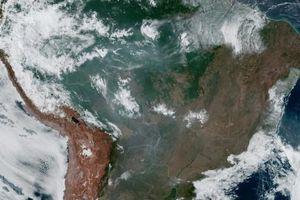 Brazil 'ra điều kiện' nhận viện trợ cứu rừng Amazon