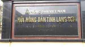 Lạng Sơn: Khởi tố cựu Chủ tịch Hội Nông dân tỉnh