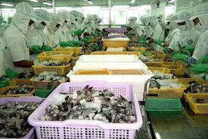 EVFTA mang đến những cơ hội nào cho con tôm Việt?