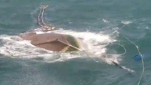 Một tàu cá bị đánh chìm trên biển Cà Mau