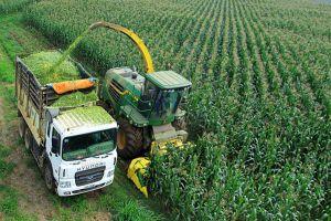 Khoa học - công nghệ đồng hành cùng nông nghiệp: Vì mục tiêu phát triển bền vững