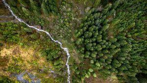 Đan Mạch gây quỹ 2,6 triệu USD nhằm chống biến đổi khí hậu