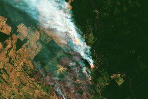 Lửa đang thiêu rụi rừng Amazon với tốc độ 110 sân bóng mỗi giờ