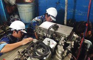 Trung tâm Hậu cần-Kỹ thuật đảo Sinh Tồn hỗ trợ sửa tàu cá cho ngư dân