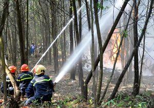 Diễn tập chữa cháy rừng cấp tỉnh năm 2019
