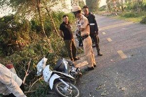 Cưa cây đổ trúng người đi đường, 1 nữ sinh tử vong ở Hải Dương