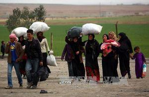 Các nước giàu cắt giảm viện trợ nhân đạo giữa lúc nhu cầu tăng cao