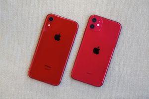 iPhone 11 có đáng mua hơn iPhone XR?