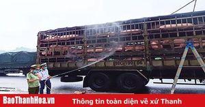 Tăng cường kiểm soát hoạt động vận chuyển, giết mổ gia súc, gia cầm
