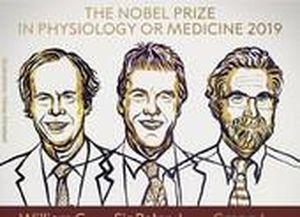 Công trình đạt Nobel Y học 2019 ảnh hưởng đến chúng ta ra sao?