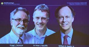 Ba nhà khoa học được trao giải Nobel Y sinh 2019 là ai?
