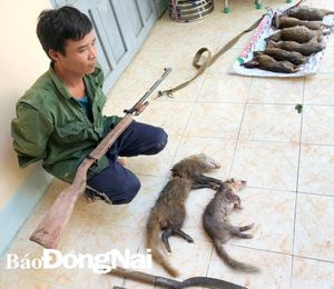 Tạm giữ kẻ săn bắt động vật nguy cấp, quý hiếm
