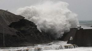 Siêu bão Hagibis đã đổ bộ vào Nhật Bản