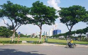 Thua kiện vụ hủy kết quả đấu giá đất vàng, Chủ tịch Đà Nẵng kháng cáo