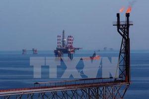 Giá dầu thế giới đi lên phiên 24/10