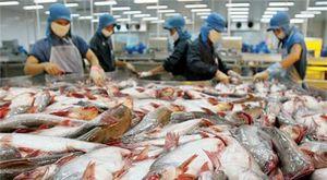 Giới thiệu cá sông Đà đến người tiêu dùng Thủ đô
