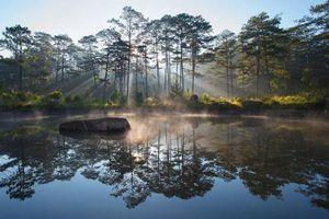 Chiêm ngưỡng vẻ đẹp của 4 Vườn Di sản ASEAN mới tại Việt Nam