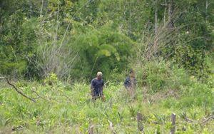 Gia Lai: Vi phạm quản lý bảo vệ rừng, một trưởng ban bị khởi tố