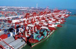 Dựng hàng rào bảo vệ hàng hóa xuất khẩu