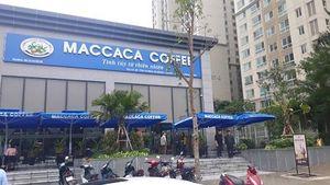 MACCACA COFFEE - Ngọt ngào hương vị Việt