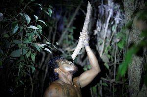 'Sói' Paulo - người bảo vệ Amazon vừa bị lâm tặc sát hại