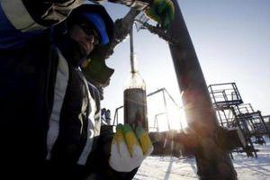 Giá dầu châu Á đi xuống phiên đầu tuần