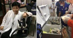 Nghi phạm đổ bê tông thi thể nữ đại gia, giấu vào tủ lạnh bị bắt giữ vì xài tiền như nước
