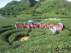Sơn La chú trọng khai thác có hiệu quả tiềm năng du lịch