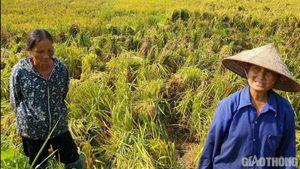 Nhân chứng vụ uẩn khúc TNGT ở Tuyên Quang bị hành hung trong đêm